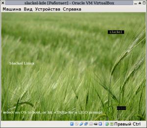 slackellive-kde-09
