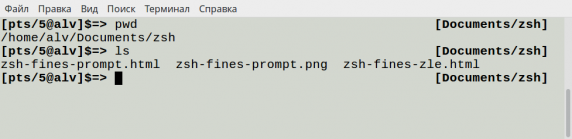zsh-fines-prompt