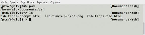 zsh-fines-prompt